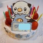 祝☆9歳!ミジュマルケーキで合同お誕生日会♪
